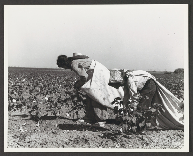 Copy print of an original photograph by Russell Lee, used in researching the look and times portrayed in &quot;...and the earth did not swallow him.&quot; <br /><br />