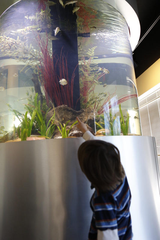 Discovery Hall and aquarium exhibit