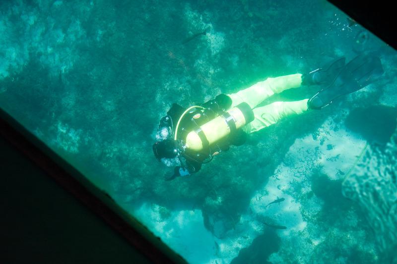 Scuba diving program
