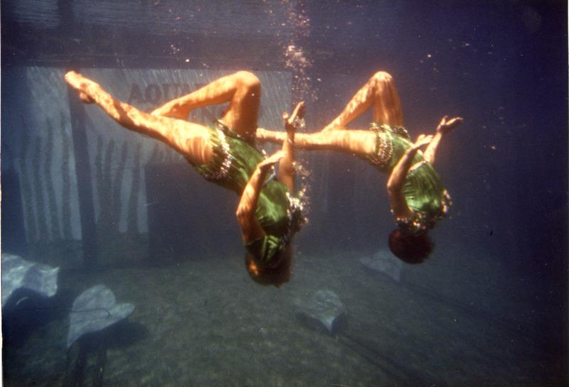 Synchronized ballet